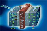 联合国制定氢燃料电池车标准