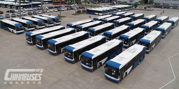 200辆金龙高端客车出口塞浦路斯 再创中国客车出口欧盟大单