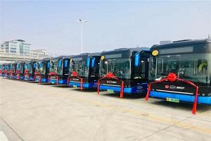 首批88辆全新比亚迪纯电动客车B10投运深圳