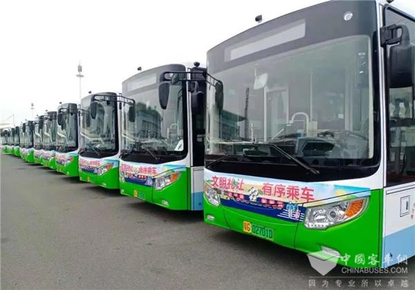 助建绿色海滨城市 银隆新能源公交车再度加盟湛江