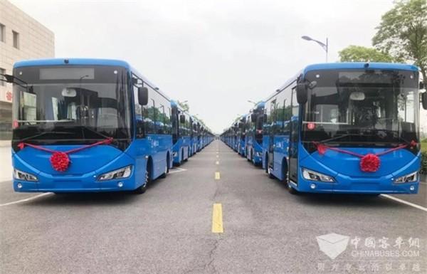 合作源于信赖 50台国唐鸿途纯电动公交交付滨海
