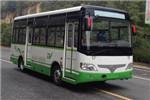 少林SLG6660EVG7公交车(纯电动10-22座)