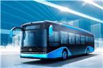 比亚迪BYD6123LGEV1客车(纯电动19-39座)