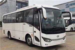 金龙XMQ6879客车