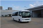 五龙FDE6750TDABEV06客车(纯电动10-21座)