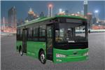 国泰JYB6800BEV公交车(纯电动13-24座)