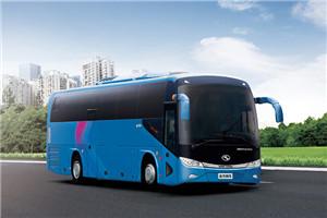 金龙XMQ6113客车