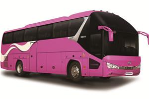 海格新海威KLQ6122客车